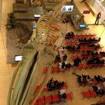 Authorities welcome speeches among dinosaur skeletons!